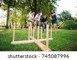 outdoor games   ring toss. | Shutterstock . vector #745087996