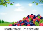 refreshing blend berries  fresh ... | Shutterstock .eps vector #745226980