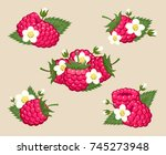 raspberry with leaves and... | Shutterstock .eps vector #745273948