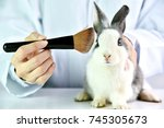 Stock photo cosmetics test on rabbit animal scientist or pharmacist do research chemical ingredients test on 745305673