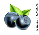 blueberries with leaves. vector ... | Shutterstock .eps vector #745307608