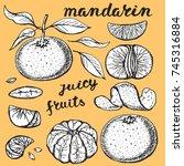 mandarin sketch.vector hand... | Shutterstock .eps vector #745316884