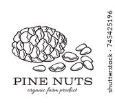 vector hand drawn pine nuts for ... | Shutterstock .eps vector #745425196