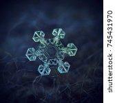 Snowflake At High Magnificatio...