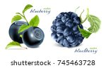 ripe berries. blueberries and... | Shutterstock .eps vector #745463728