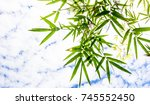 close up bamboo leaves on sky... | Shutterstock . vector #745552450