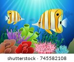 aquarium with fish and corals.... | Shutterstock . vector #745582108