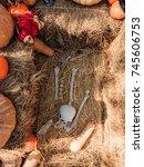 halloween skeleton decoration | Shutterstock . vector #745606753
