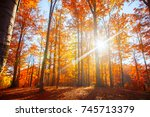 autumn forest scenery with rays ... | Shutterstock . vector #745713379