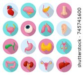 human internal organs. location ... | Shutterstock .eps vector #745741600