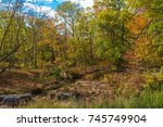 colorful trees in autumn... | Shutterstock . vector #745749904