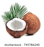 coconuts with leaves on a white ... | Shutterstock . vector #745786240