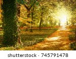 surrounded by trees in the... | Shutterstock . vector #745791478