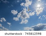 white dove flying to light | Shutterstock . vector #745812598