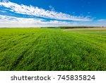 gress  green field | Shutterstock . vector #745835824