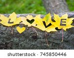 bright yellow maple leaves on... | Shutterstock . vector #745850446