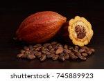 cacao harvest fruit theme....   Shutterstock . vector #745889923