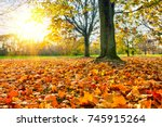 sunny autumn landscape with... | Shutterstock . vector #745915264