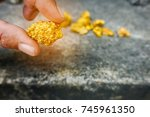 pure gold ore found in the mine ... | Shutterstock . vector #745961350
