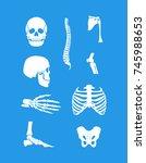 silhouette white human skeleton ... | Shutterstock .eps vector #745988653