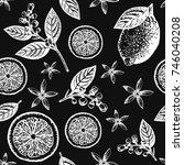 citrus seamless pattern. hand... | Shutterstock .eps vector #746040208