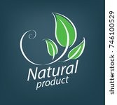 natural product logo | Shutterstock .eps vector #746100529