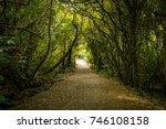 dense bush track  hiking path    Shutterstock . vector #746108158