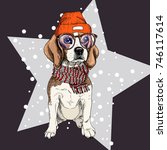 vector portrait of beagle dog... | Shutterstock .eps vector #746117614
