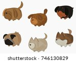 collection of stylized dogs.... | Shutterstock .eps vector #746130829