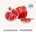 beautiful hand drawn botanical... | Shutterstock .eps vector #746280280