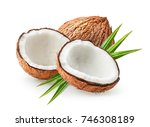 coconuts isolated on the white... | Shutterstock . vector #746308189