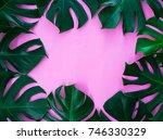 monstera leaf frame on pink... | Shutterstock . vector #746330329