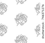 vector black decorative... | Shutterstock .eps vector #746371276