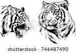 set of vector drawings on the... | Shutterstock .eps vector #746487490