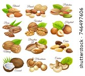 set food grains  of cashew and... | Shutterstock .eps vector #746497606