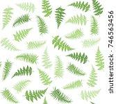 fern frond herbs  tropical... | Shutterstock .eps vector #746563456