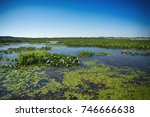 view of pond and marsh area in... | Shutterstock . vector #746666638