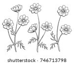 cosmos flower graphic black... | Shutterstock .eps vector #746713798