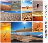 desert collage - stock photo