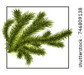 branch of pine tree. spruce ... | Shutterstock .eps vector #746809138