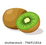 kiwi fruit | Shutterstock .eps vector #746911816