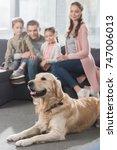 dog lying on the floor  family... | Shutterstock . vector #747006013