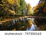 bridge over a pond  autumn... | Shutterstock . vector #747300163