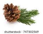 christmas cone with red berries ... | Shutterstock . vector #747302569