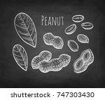 peanut set. chalk sketch on... | Shutterstock .eps vector #747303430