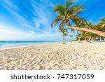 paradise beach also called... | Shutterstock . vector #747317059