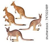 Set Of Vector Kangaroo In...