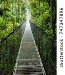 bridge through the canopy  ... | Shutterstock . vector #747347896