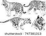 set of vector drawings on the... | Shutterstock .eps vector #747381313