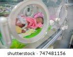 sleep on the bed pediatric...   Shutterstock . vector #747481156